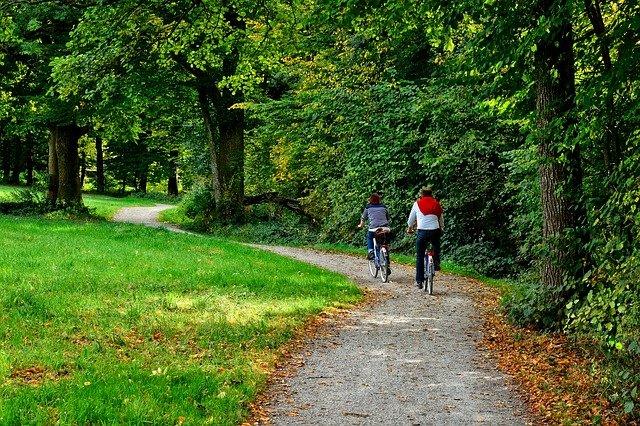 cyklisté u lesa